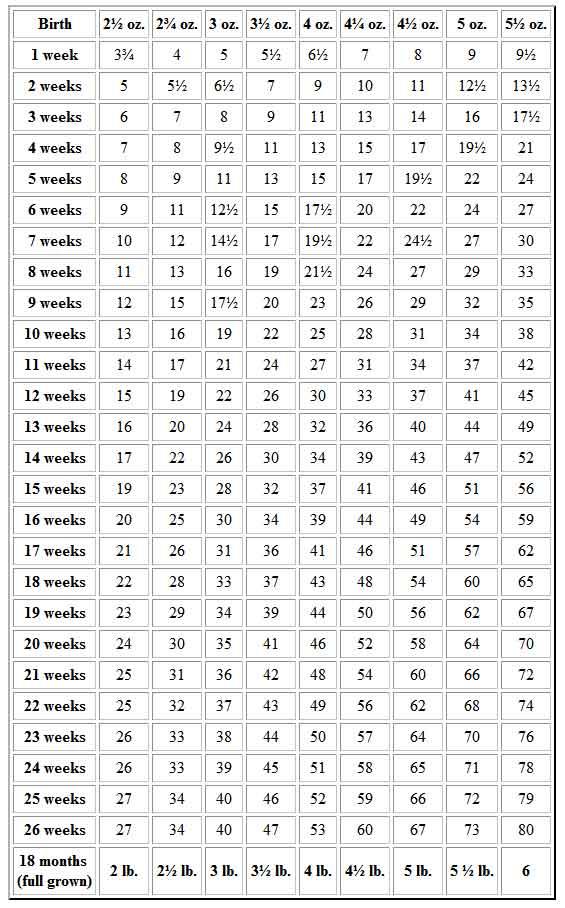 French Bulldog Weight Chart Ibovnathandedecker